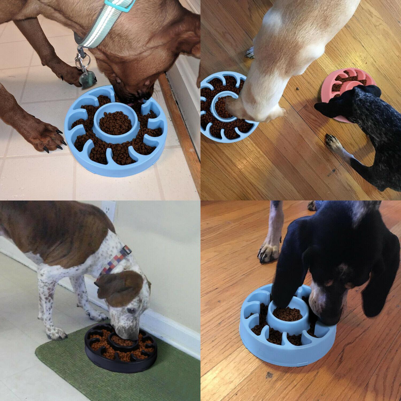 STOCK Slow Dog Bowl Large Non Slip Feed Anti Choke