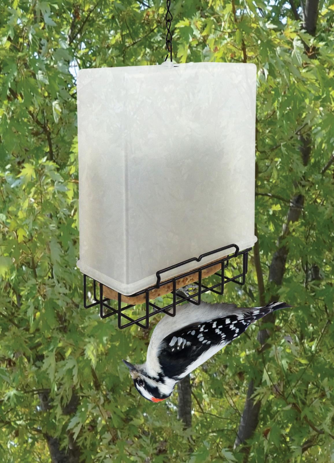 suet bird feeding system