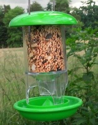 wonderful european fun green bird seed feeder