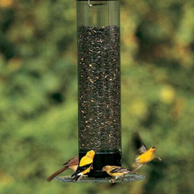 Droll Yankees YCPT-360 021964205300 Squirrel Proof Bird Feed