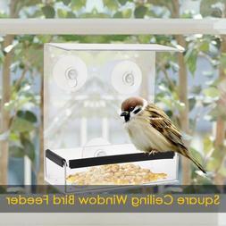 New Transparent Acrylic Weatherproof <font><b>Bird</b></font