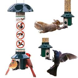 Roamwild PestOff Squirrel Proof Wild Bird Feeder Mixed Seed