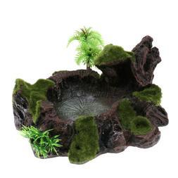 Rock Bowl Food Water Dish Feeder Plant Decor for Terrarium R