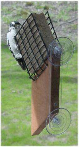 Songbird Essentials SE539 Suet Window Feeder