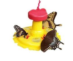 Songbird Essentials SE78200 Butterfly Feeder