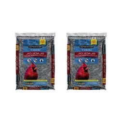 Pennington Select Black Oil Sunflower Seed Wild Bird Feed, 4
