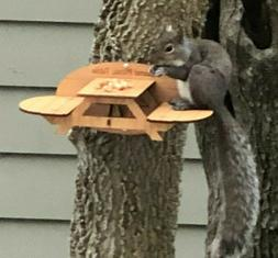 Squirrel Feeder Picnic Table