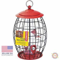 squirrel x sweet tweet cafe bird feeder