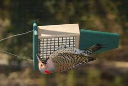 Rubicon Suet Feeder With Tail Prop Driftwood