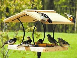 Birds Choice Wrought Iron & Cedar Fly-Thru Bird Feeder
